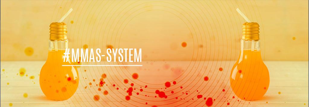 MMAS-System-GeoMarketing-Business-Intelligence-DataBase-Datenbank